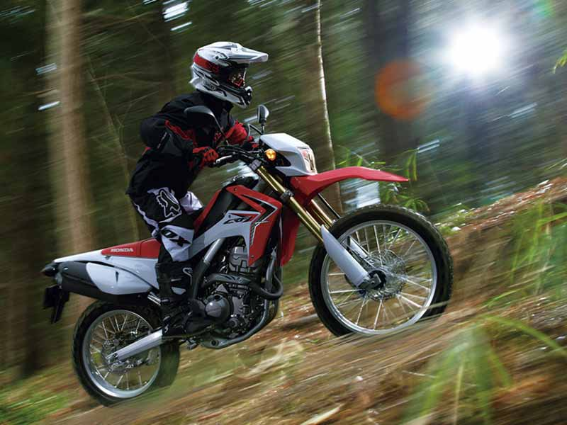 Thanks to the Impulse having re-opened the on/off-roader chapter in the country, it's about time we can think of getting our hands on more serious stuff, right? Say hello to the Honda CRF 250L � a motorcycle that you might just be able to buy off the shelf very soon